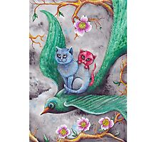 Tea cup kittens adventure Photographic Print