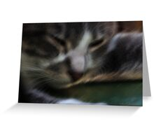Button Naps Greeting Card