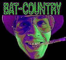 This Is Bat Country by Dark Threads