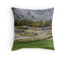 Rural Montana Throw Pillow