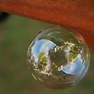 Soapy Bubble by ElsT