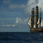 The HMS Bounty by Madzia Bryll