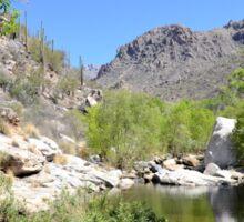 Canyon Creek Sticker