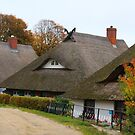 Three Thatched Roofs by karina5
