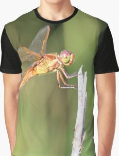 Dragonfly 1 Graphic T-Shirt
