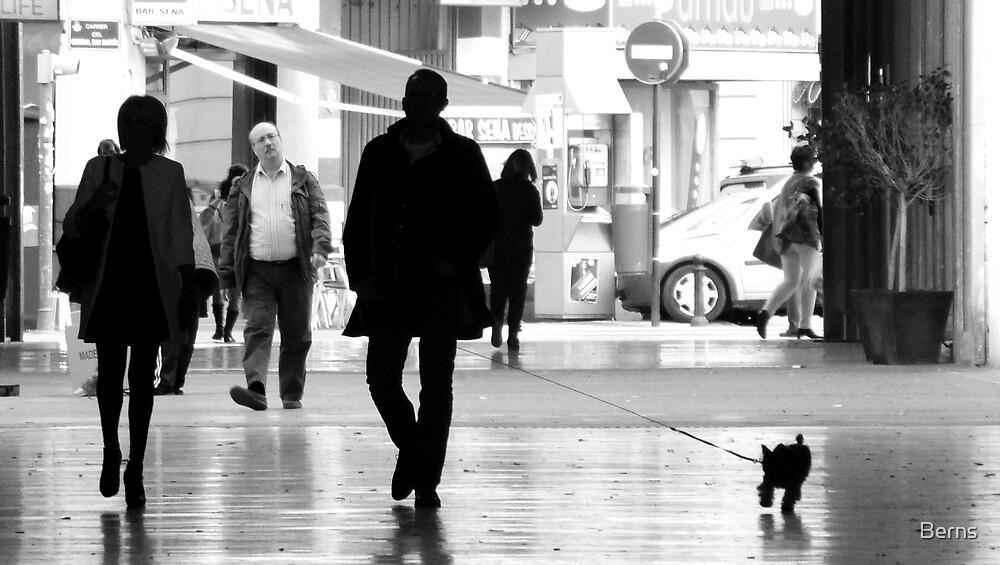 A Walk on The Dark Side by Berns