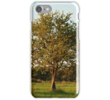 leafy green iphone/samsung galaxy case iPhone Case/Skin