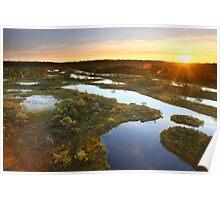 Sunrise at the Bog  Poster
