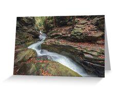 The Narrowing Canyon November 2012 Greeting Card