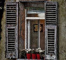 Window Garden by Karen Lewis