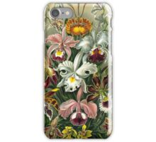 Haeckel's Colorful Orchid Lithograph iPhone Case/Skin