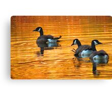 Golden Geese Canvas Print