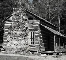 Olivers Cabin - Cades Cove Tennessee  by Tony Wilder