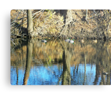 Greenheads on Glass Metal Print