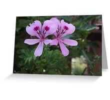 2 Purple Flowers Greeting Card