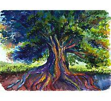 Energy Tree Photographic Print