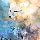 ARCTIC FOX by Tammera