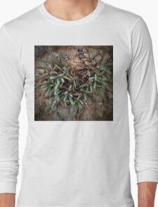 Tiny Shrub Heart Long Sleeve T-Shirt