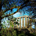 National Monument Edinburgh by Francis  McCafferty