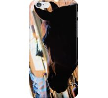 Bound Tree 5 iPhone Case/Skin