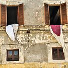 Hanging Out Two Windows-Calcata, Italy by Deborah Downes