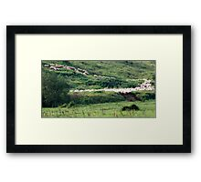 Follow the Leaders-Monterosi, Italy Framed Print