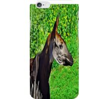 Okapia johnstoni  iPhone Case/Skin