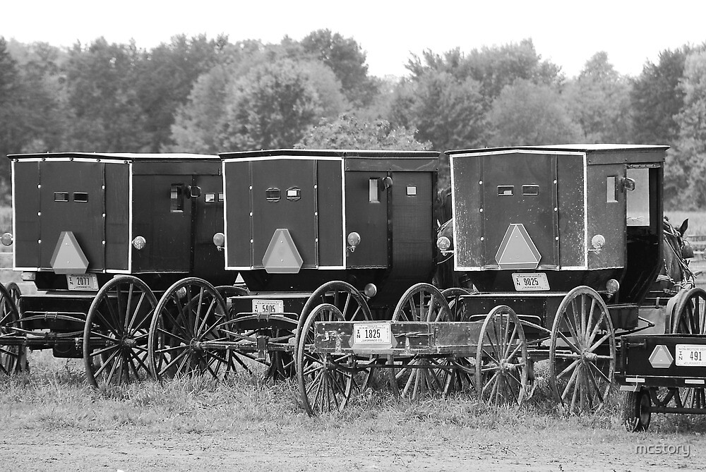 Amish Buggies by mcstory