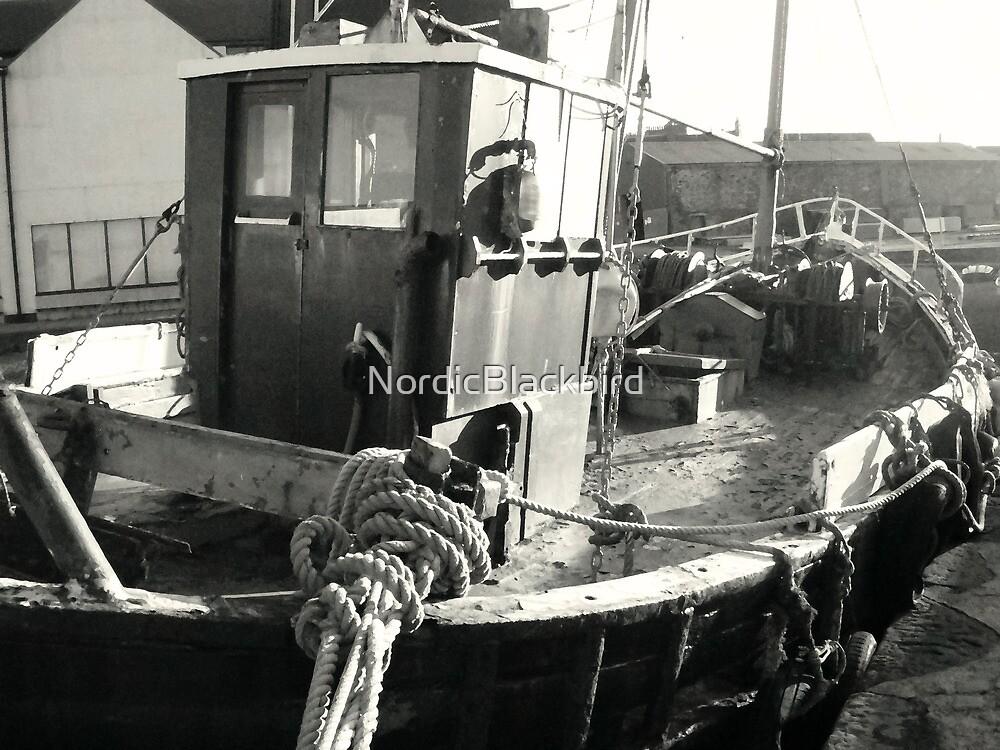 le vieil homme et la mer by NordicBlackbird