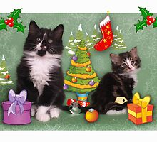 Cute kittens Christmas card by Christopher Ware