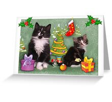 Cute kittens Christmas card Greeting Card