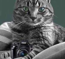 <º))))><  IV GOT THE CAMERA~ I GOT THE POSE~ TAKE MY  PICTURE ~YOU'LL REMEMBER THE MOST <º))))><  by ✿✿ Bonita ✿✿ ђєℓℓσ