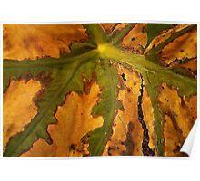 Leaf Highway Poster