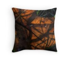 Light and Shadow of a Leaf Throw Pillow