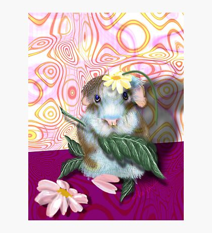 Herbie Hamster, animal whimsy Photographic Print