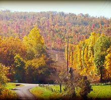 An Autumn View by Susan S. Kline