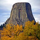 Devils Tower, Wyoming by Margaret  Hyde