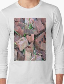 Old Bricks Strong But Discarded Long Sleeve T-Shirt