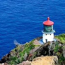 Makapu'u Point Lighthouse by ZWC Photography