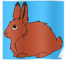 Red Arctic Hare Poster