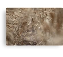 For Our Bread Canvas Print