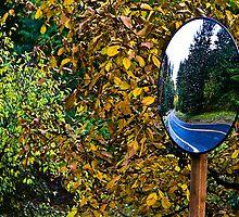 Mirror Rewind by Rob Atkinson