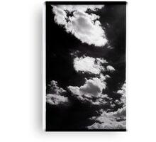 00302 Canvas Print
