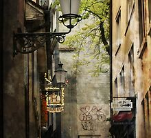 Hidden alleyway - Zurich by Dave Morrison