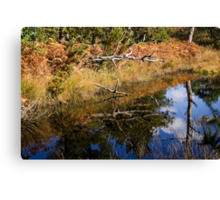 Reflected Nature Canvas Print