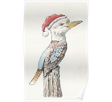 Santa Kookaburra Poster