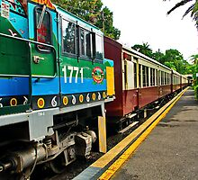 At Kuranda. by Phil Thomson IPA
