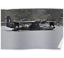 Catalina Taxiing In Poster