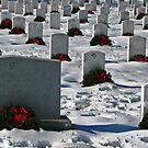 An Arlington Christmas by michael6076
