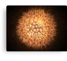 Dandelion Flame Canvas Print